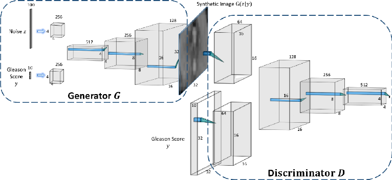Figure 1 for ProstateGAN: Mitigating Data Bias via Prostate Diffusion Imaging Synthesis with Generative Adversarial Networks