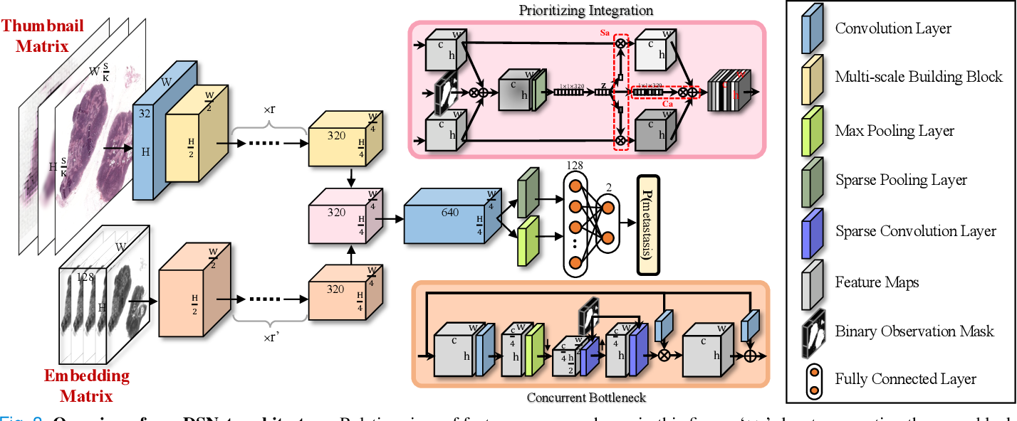 Figure 4 for DSNet: A Dual-Stream Framework for Weakly-Supervised Gigapixel Pathology Image Analysis