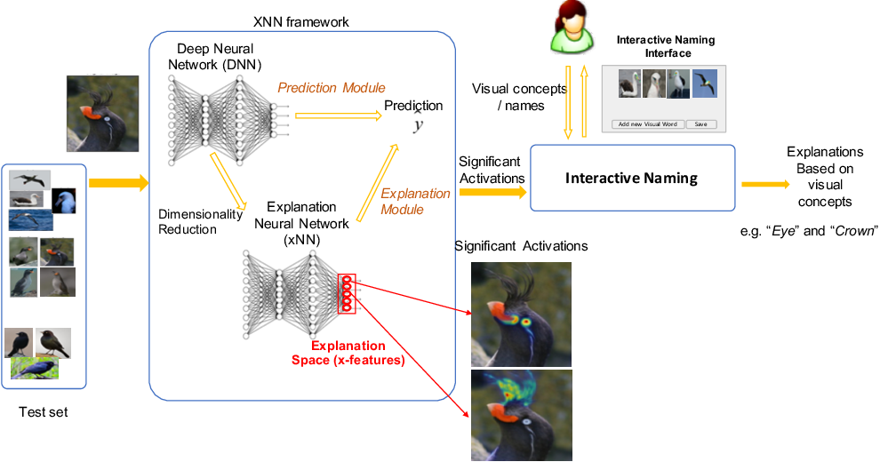Figure 1 for Interactive Naming for Explaining Deep Neural Networks: A Formative Study