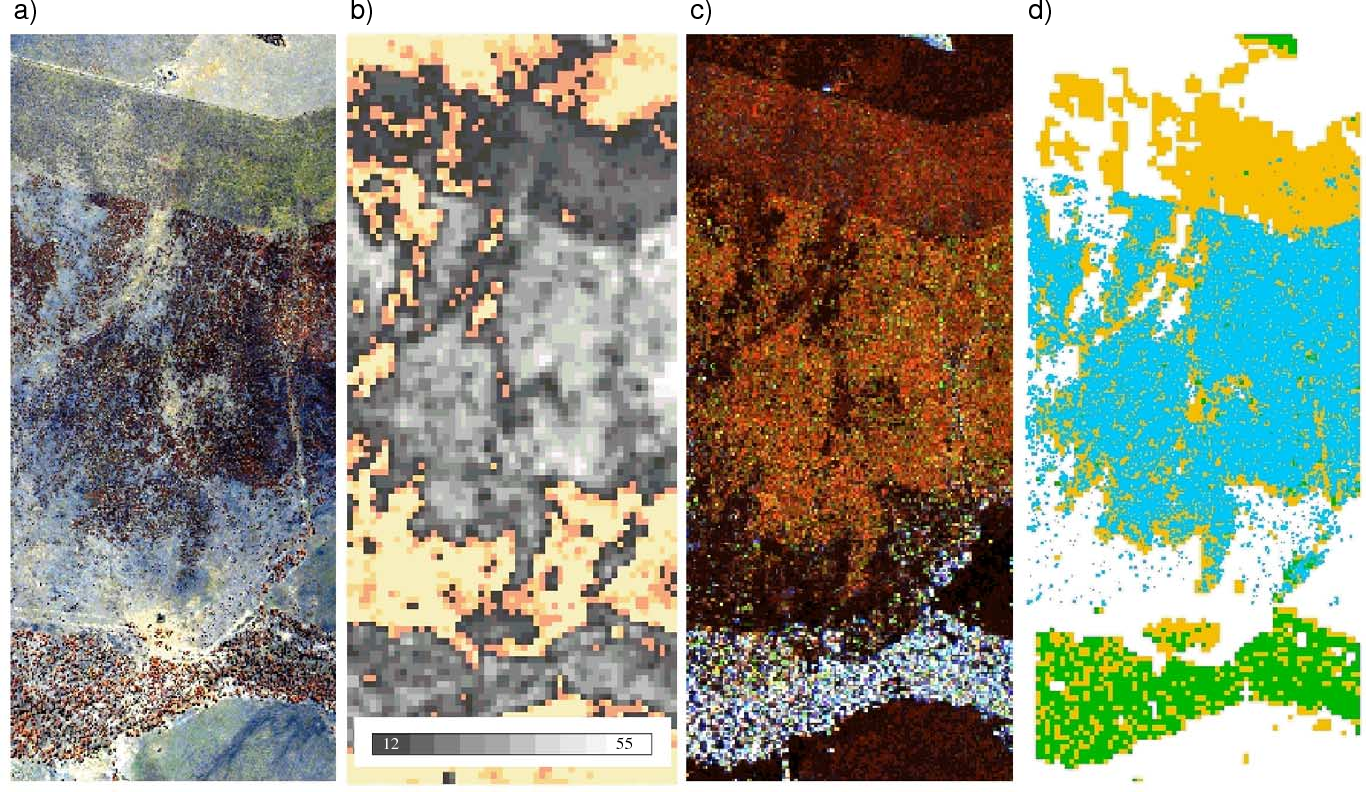 Fig. 8. (a) HyMap image showing areas of regrowth with PSU C3, (b) FPC image of Brigalow regrowth representing an FPC of up to 53% (areas below 12% are coloured), (c) regrowth as observed using a combination of C-, L- and P-band Total Power (in RGB) and (d) the mapped area of Brigalow regrowth (orange) and remnant forest (green) The area in blue is the area of regrowth observed in (a) overlain onto the classification.