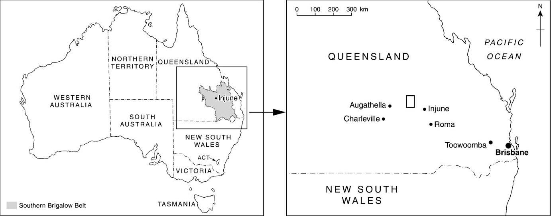 Fig. 2. The Injun