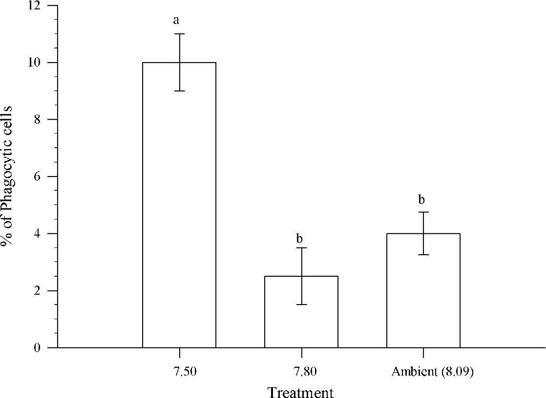 Fig 4. The percentage of phagocytic hemocytes inChionoecetes bairdi, Tanner Crab, from each pH treatment. The error bars represent the standard error and a different letter indicates a significant difference between treatments.