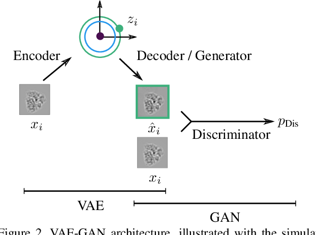 Figure 3 for Estimation of Orientation and Camera Parameters from Cryo-Electron Microscopy Images with Variational Autoencoders and Generative Adversarial Networks