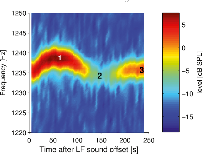 Aftereffects of Intense Low-Frequency Sound on Spontaneous