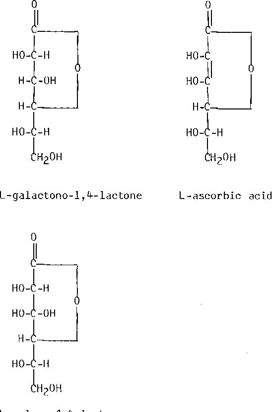 Figure 3. The s t ructure of L -ga lae tono-1 ,#- lae tone, L-ascorbic acid and L-gu lono-1 ,#- lae tone.