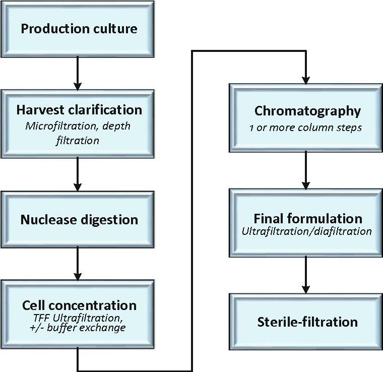 Figure 6 from gene therapy semantic scholar 6 generalized example purification process flow for viral gene therapy products ccuart Gallery