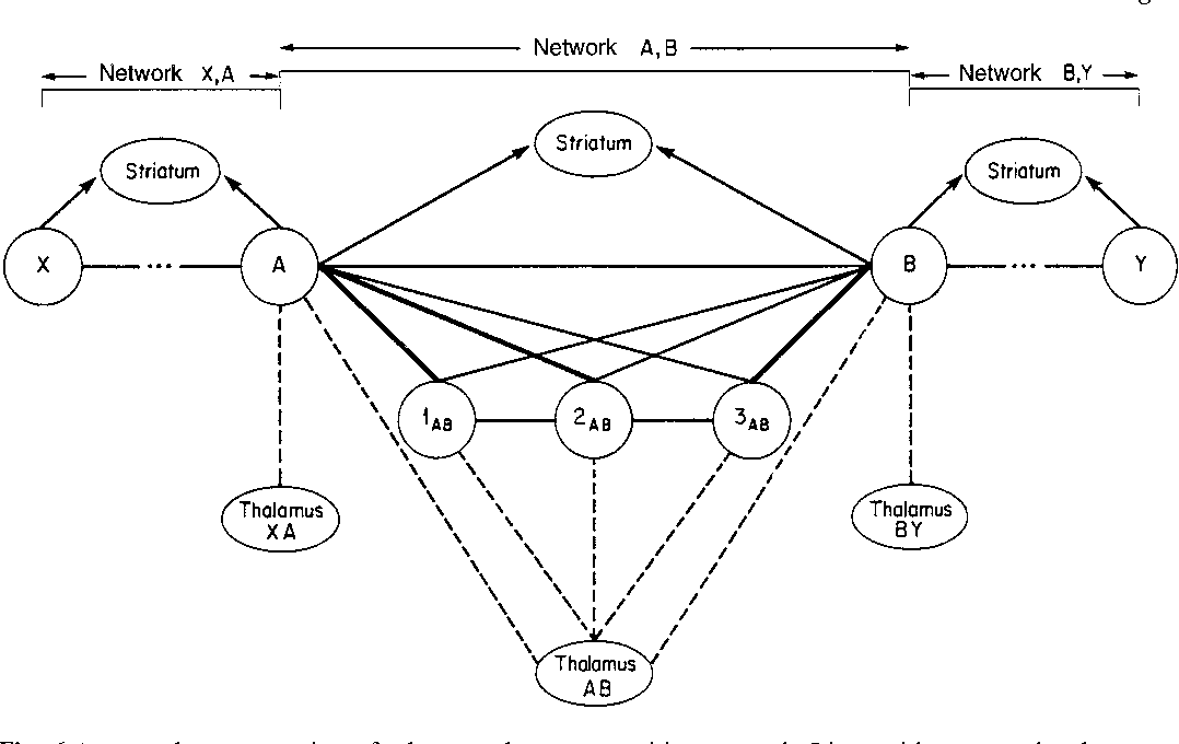 Figure 6 from From sensation to cognition  - Semantic Scholar
