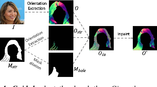 Figure 3 for MichiGAN: Multi-Input-Conditioned Hair Image Generation for Portrait Editing