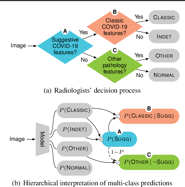 Figure 2 for Hierarchical Analysis of Visual COVID-19 Features from Chest Radiographs