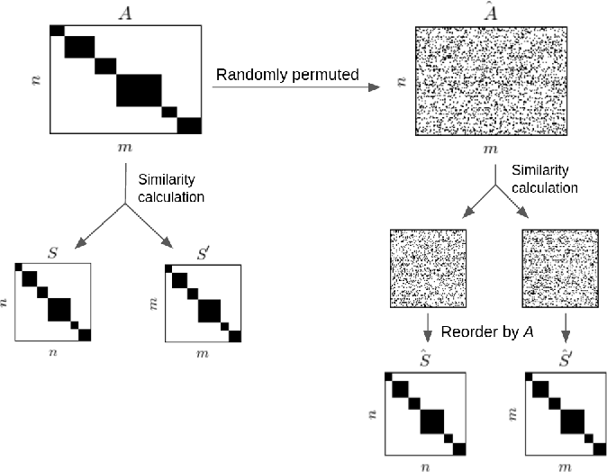 Figure 3 for Reflexive Regular Equivalence for Bipartite Data