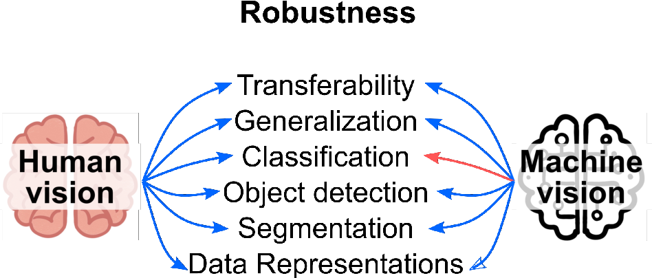 Figure 3 for Bio-inspired Robustness: A Review