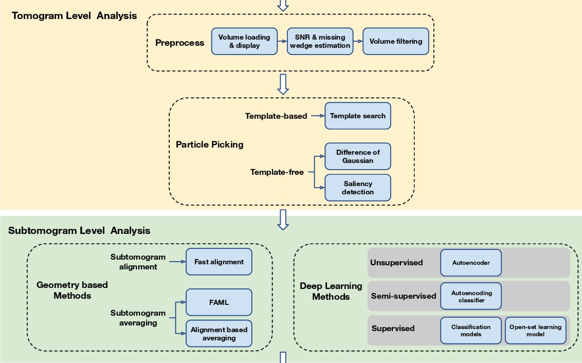 Figure 1 for AITom: Open-source AI platform for cryo-electron Tomography data analysis