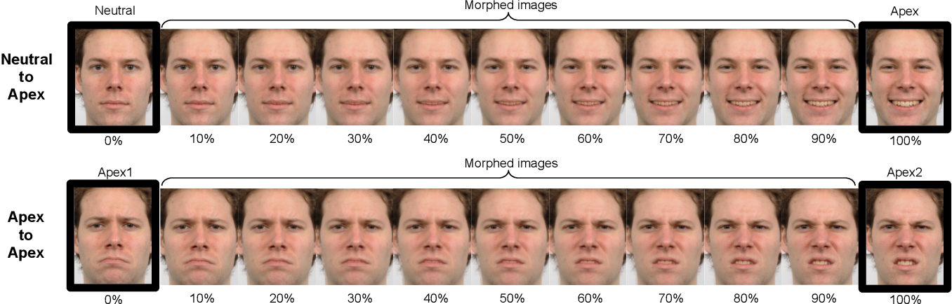 Figure 1 for Morphset:Augmenting categorical emotion datasets with dimensional affect labels using face morphing