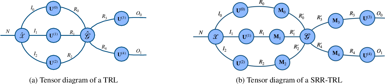 Figure 1 for Stochastically Rank-Regularized Tensor Regression Networks