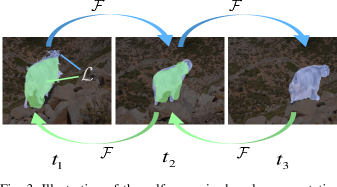 Figure 3 for Self-supervised Object Tracking with Cycle-consistent Siamese Networks