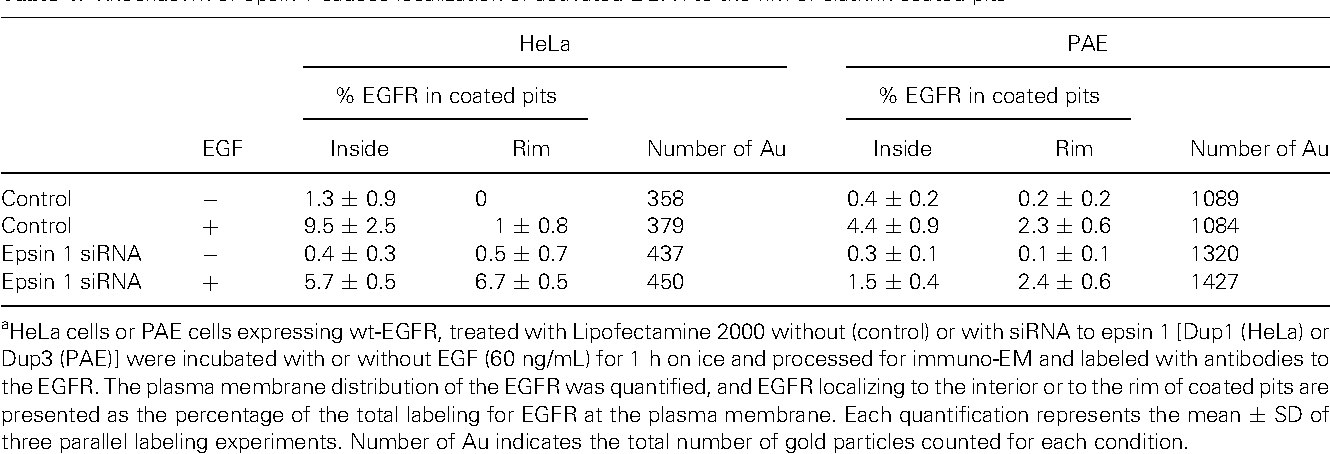 Table 1: Knockdown of epsin 1 causes localization of activated EGFR to the rim of clathrin-coated pitsa