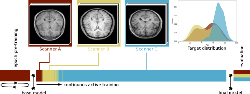 Figure 1 for Continual Active Learning for Efficient Adaptation of Machine Learning Models to Changing Image Acquisition