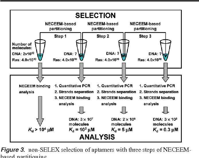 Figure 3 from Non-SELEX selection of aptamers  - Semantic