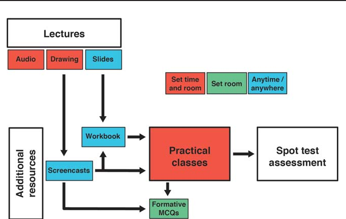Anatomy Drawing Screencasts Enabling Flexible Learning For Medical