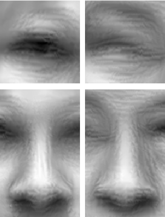 Figure 4 for Thermal to Visible Synthesis of Face Images using Multiple Regions