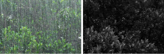 Figure 3 for Robust Optical Flow Estimation in Rainy Scenes