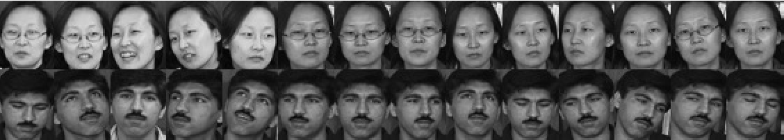 Figure 2 for Non-negative representation based discriminative dictionary learning for face recognition