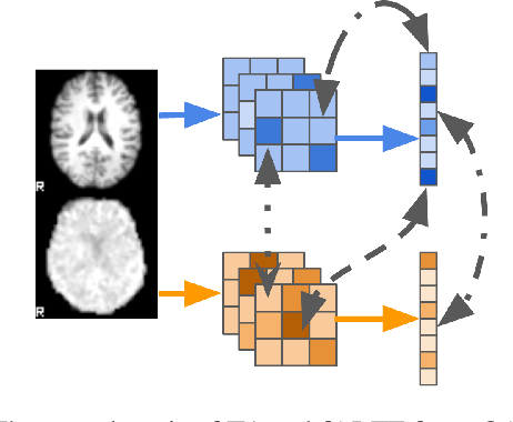 Figure 1 for On self-supervised multi-modal representation learning: An application to Alzheimer's disease