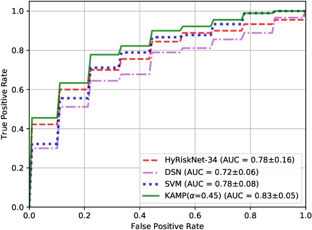 Figure 4 for Knowledge-based Analysis for Mortality Prediction from CT Images