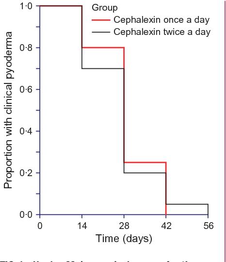 Cephalexin once daily