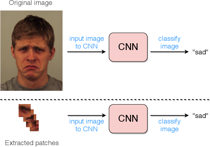Figure 1 for Deep Evolution for Facial Emotion Recognition