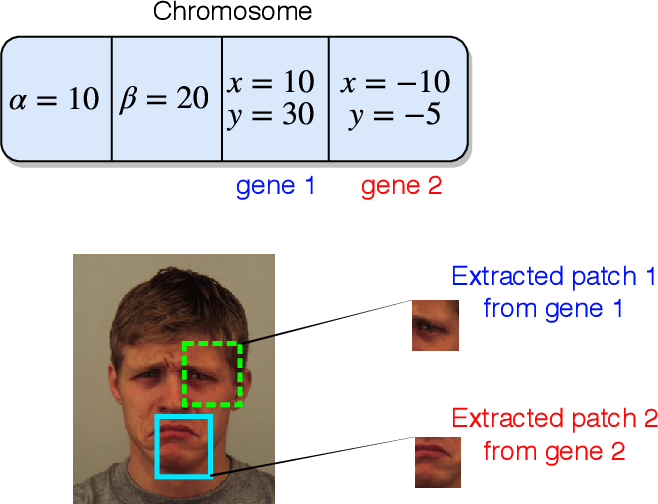 Figure 3 for Deep Evolution for Facial Emotion Recognition