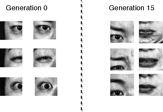 Figure 2 for Deep Evolution for Facial Emotion Recognition