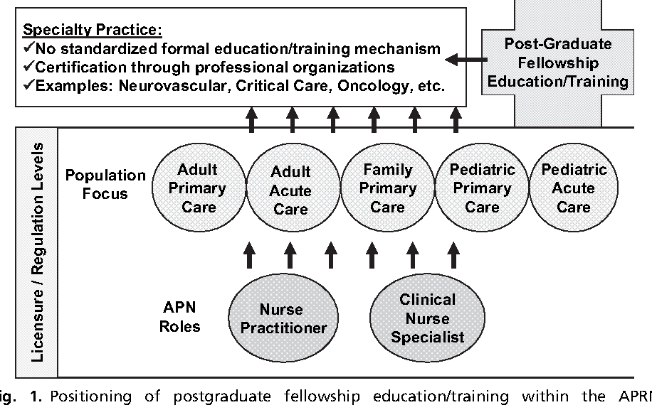 Postgraduate fellowship education and training for nurses