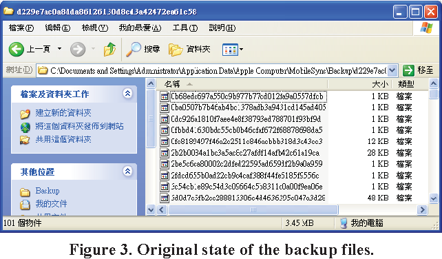 Figure 3. Original state of the backup files.