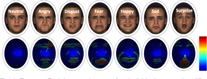 Figure 3 for Magnifying Subtle Facial Motions for Effective 4D Expression Recognition