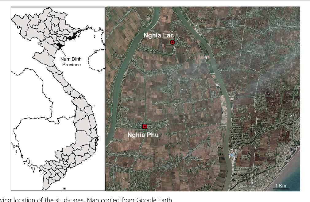 The role of rice fields fish ponds and water canals for figure 1 sciox Image collections