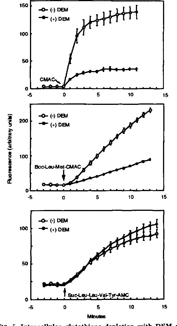 FIG. 5. Intracellular glutathione depletion with DEM de-