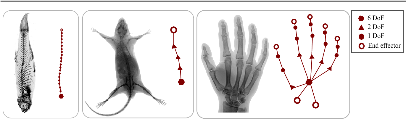 Figure 3 for Lie-X: Depth Image Based Articulated Object Pose Estimation, Tracking, and Action Recognition on Lie Groups