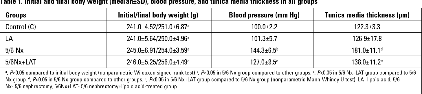 Table 1. Initial and final body weight (median±SD), blood pressure, and tunica media thickness in all groups
