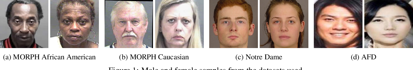 Figure 1 for Analysis of Gender Inequality In Face Recognition Accuracy