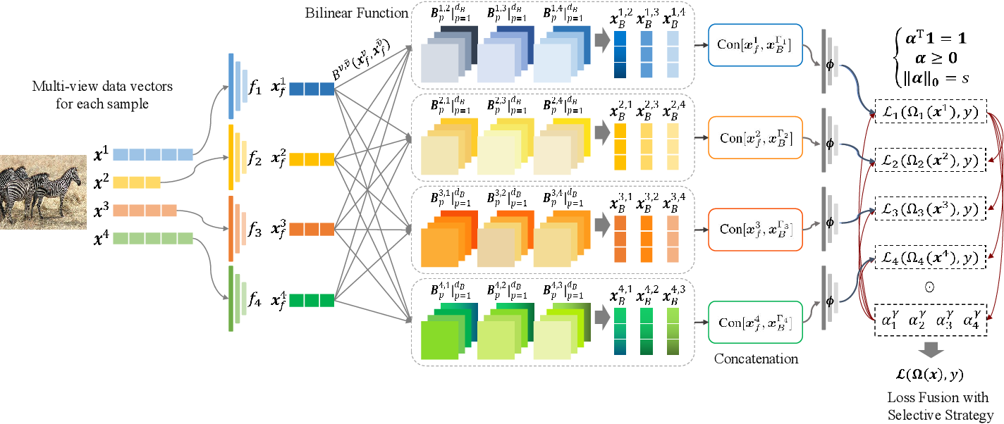 Figure 1 for Embedded Deep Bilinear Interactive Information and Selective Fusion for Multi-view Learning