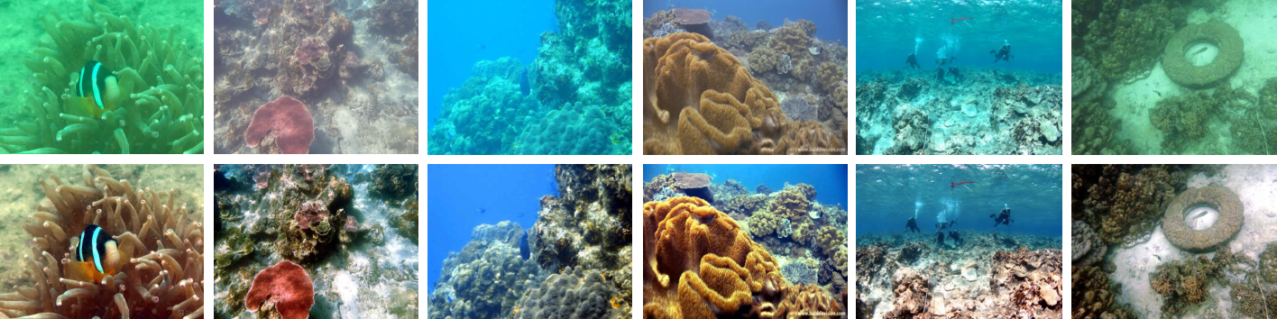 Figure 1 for An Underwater Image Enhancement Benchmark Dataset and Beyond