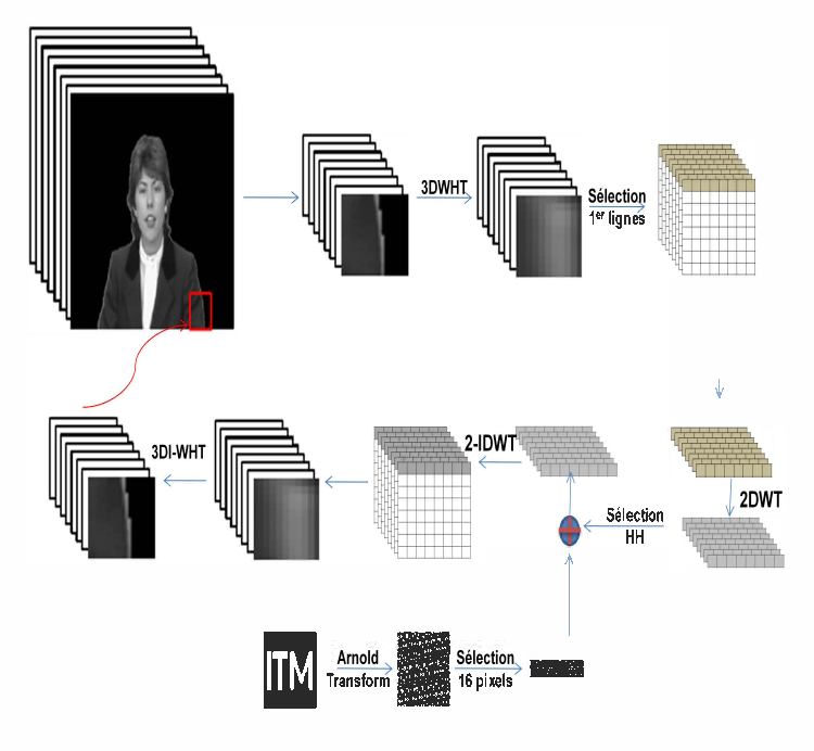 Video object watermarking using 3d walsh hadamard transform and figure 4 ccuart Image collections