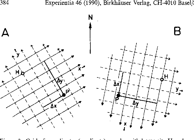 Figure 3. Grid of coordinates (gradients) x and y with home site H and a bird's current position P. The grids themselves are identical in A and B, but geographically they are differently oriented. (From WallraffT~