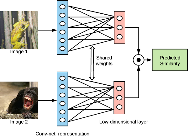 Figure 1 for Extracting low-dimensional psychological representations from convolutional neural networks