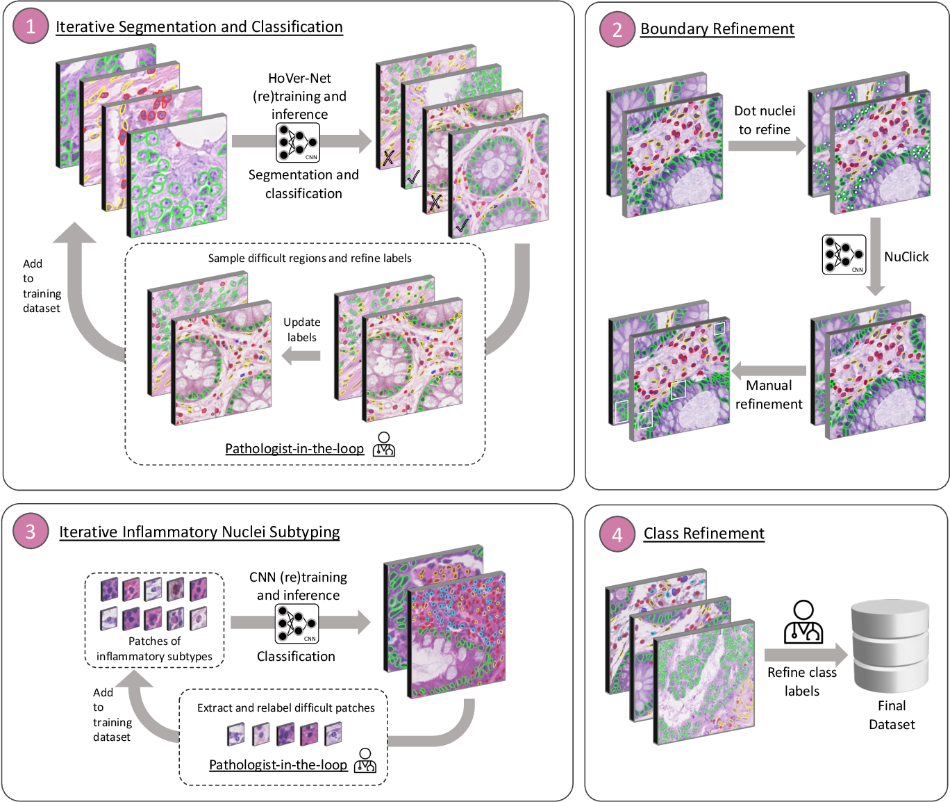 Figure 1 for Lizard: A Large-Scale Dataset for Colonic Nuclear Instance Segmentation and Classification