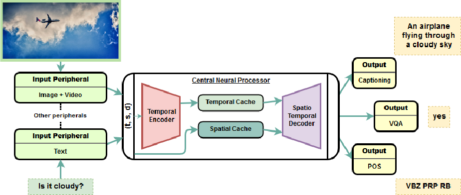 Figure 1 for OmniNet: A unified architecture for multi-modal multi-task learning