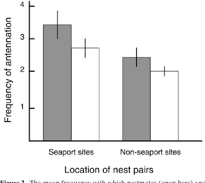 Absence of aggression but not nestmate recognition in an