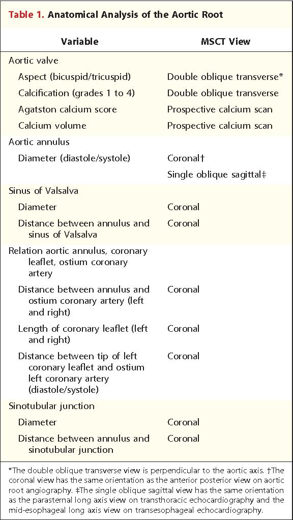 Left coronary artery structure - Semantic Scholar