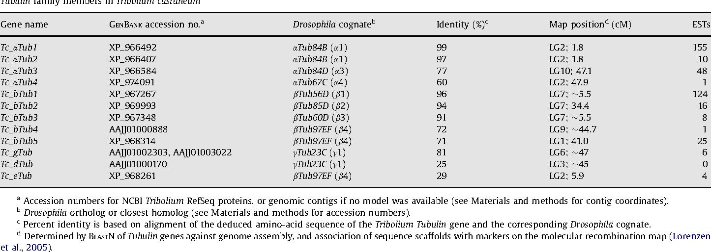 Table 1 Tubulin family members in Tribolium castaneum